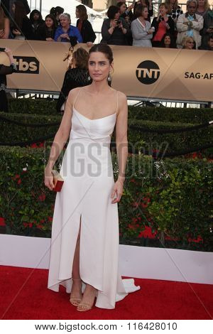 LOS ANGELES - JAN 30:  Amanda Peet at the 22nd Screen Actors Guild Awards at the Shrine Auditorium on January 30, 2016 in Los Angeles, CA