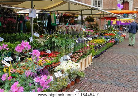 Exhibition Sale On The Grote Markt In Haarlem. The Netherlands