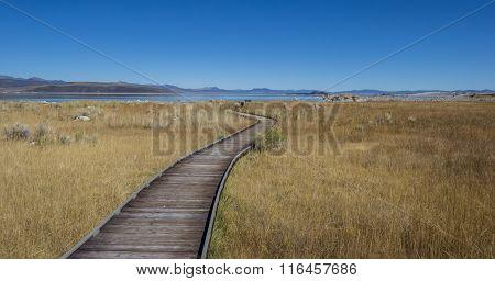 Walking Trail At Mono Lake In California