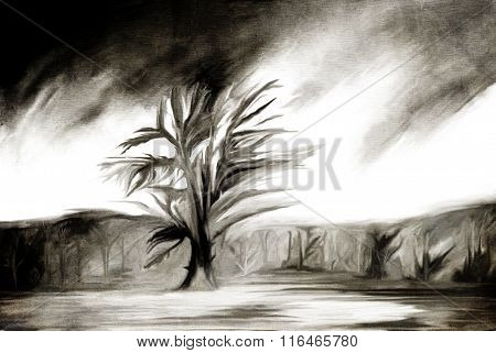 Tree Sketch Illustration