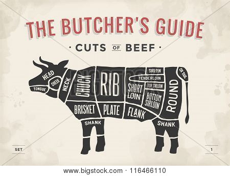 Cut Of Beef Set. Poster Butcher Diagram And Scheme - Cow. Vintage Typographic Hand-drawn. Vector Ill