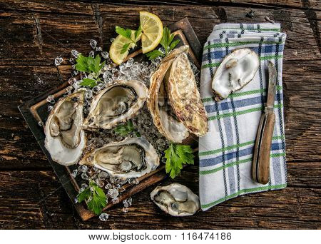 Oysters served on wooden board with ice drift