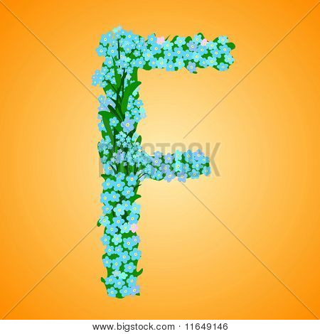 Letter F - Forget-me-not