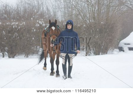 Horserider Walking With Horse