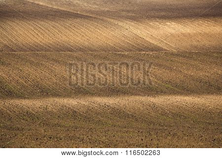 Plowed Agricultural Field Background