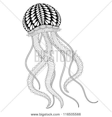 Hand drawn sea Jellyfish for adult coloring pages in doodle, zen