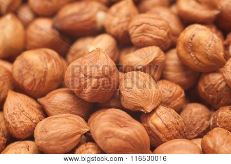 Pile Of Shelled Hazelnuts