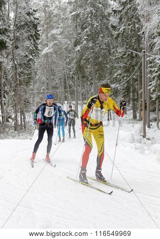 Group Of Cross Country Skiing Men In The Beautiful Spruce Forest