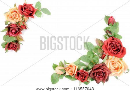 Border from roses