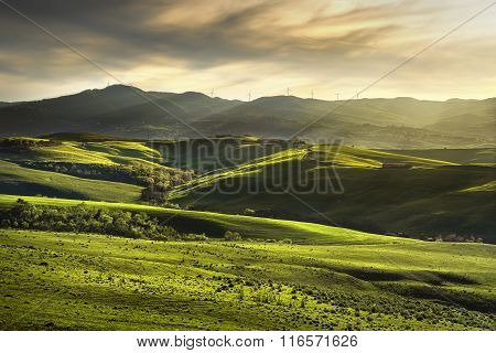 Tuscany Spring, Rolling Hills On Sunset. Rural Landscape. Green Fields And Farmlands. Italy