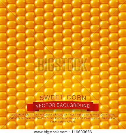 vector background texture, yellow corn. design element