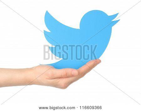 Hand holds twitter logotype