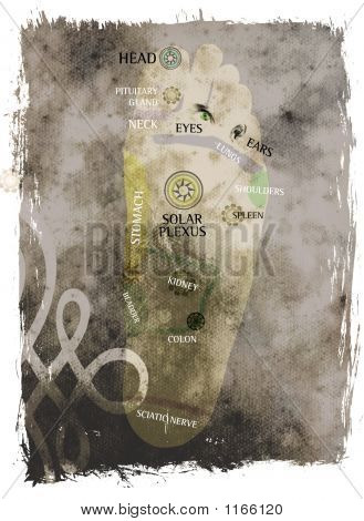 mixed media illustration of reflexotheraphy feet map poster
