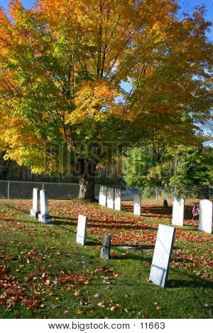 Old Cemetery In Fall