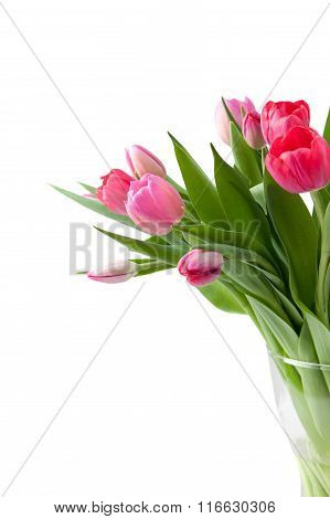 Bouquet Of Pink Tulips In Vase