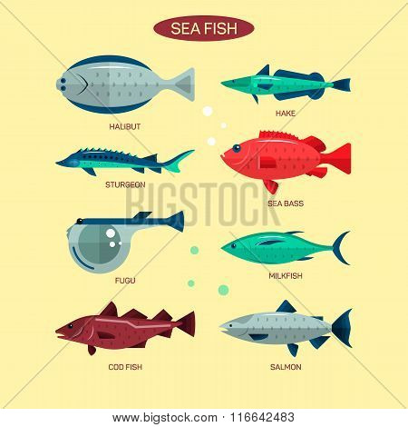 Fish vector set in flat style design. Ocean, sea and river fishes icons collection. Salmon, fugu, ba