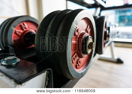 Row Of Dumbbells In Gym.