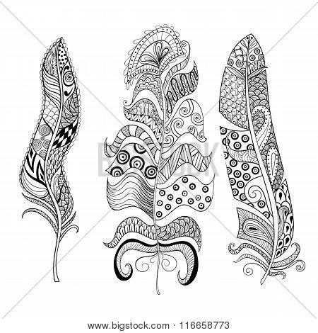 Zentangle stylized elegant feathers set. Hand drawn vintage illu