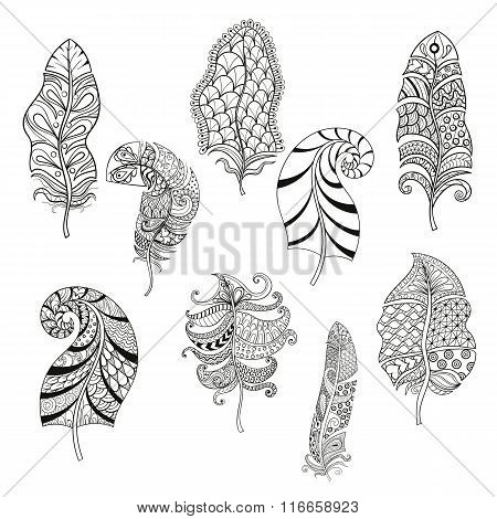 Zentangle stylized nine feathers for coloring page. Hand drawn v