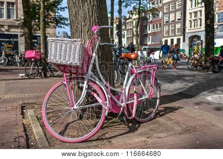 AMSTERDAM, NETHERLANDS - JULY 07, 2015: Pink bicycle leaning against a tree on the street in Amsterdam - most bicycle-friendly capital city in the world where over 60% of trips are made by bike.