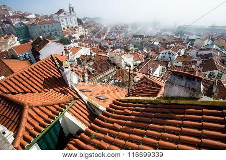 Roofs Lisbon