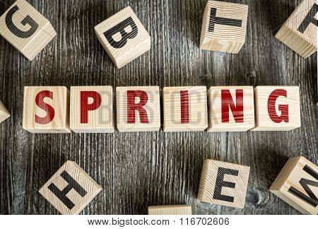 Wooden Blocks with the text: Spring