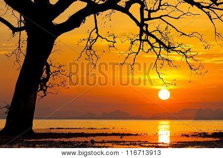 Beautiful sunset on a tropical island. Koh Mak. Thailand.