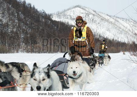 Kamchatka Sled Dog Racing Beringia. Russia, Far East