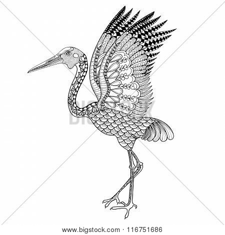 Hand drawn Brolga, Australian crane illustration for antistress