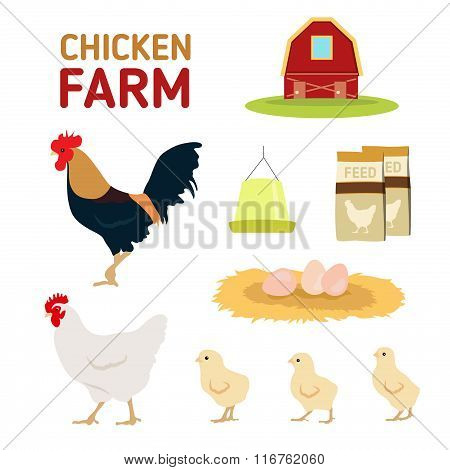 Chicken Hen Rooster Egg Feed And Farm Isolate On White Background