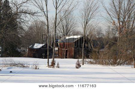 Old Faded Barns