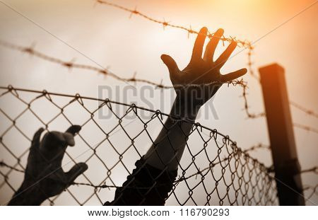 Refugee men and fence