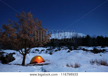 lighting tent and oak tree in the snow of Etna Park under starry sky, Sicily