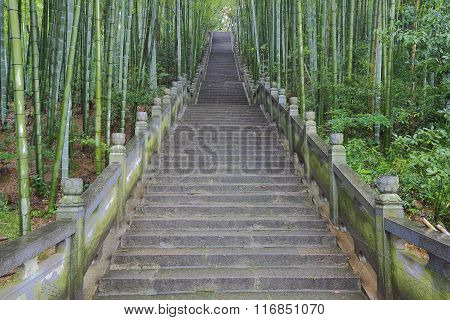 Scenic Mountaineer Step Stairs Next To The Bamboo Forest