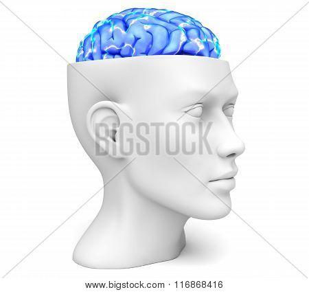 Head With Active Brain