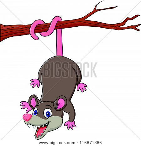 Cartoon funny Opossum on a Tree Branch