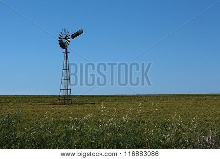 Windmill and wheatfield