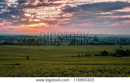 Sunrise time over vineyards of Beaujolais, France