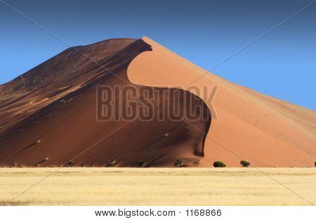 Serpentine Dune