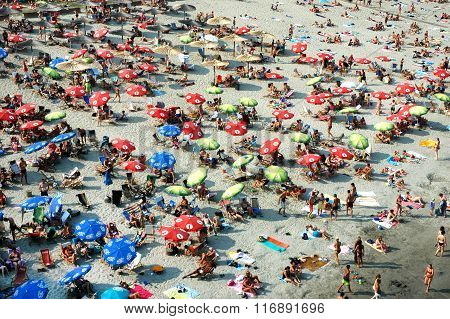Sunbathing on the Danub's beach Strand in Novi Sad, Serbia