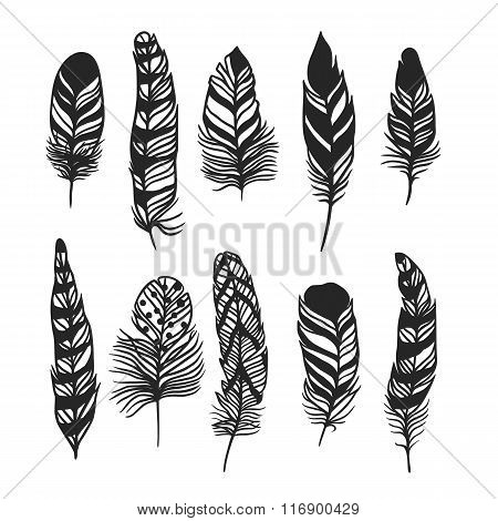 Boho feather hand drawn effect vector style illustration