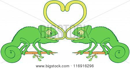 Chameleons sticky love