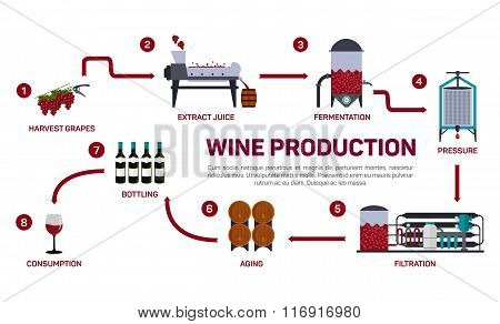 Vector illustration of wine making. How wine is made, wine elements, creating a wine, winemaker tool