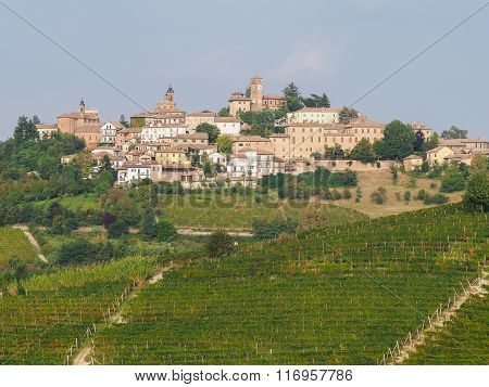 Neive, Small Town Of Langhe, Piedmont