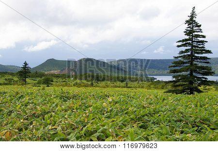 Caldera volcano Golovnin
