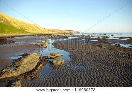 Sea low tide evening.