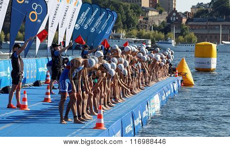 STOCKHOLM - AUG 22 2015: Group of male swimming competitors in colorful swimsuits concentrating before the start signal in the Mens's ITU World Triathlon series event August 22 2015 in Stockholm Sweden