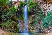 Falls Shulamit falls into a shallow pond with emerald water. Ein Gedi - Nature Reserve and National Park, Israel poster