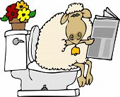 this illustration depicts a sheep sitting on a toilet and reading a newspaper. poster