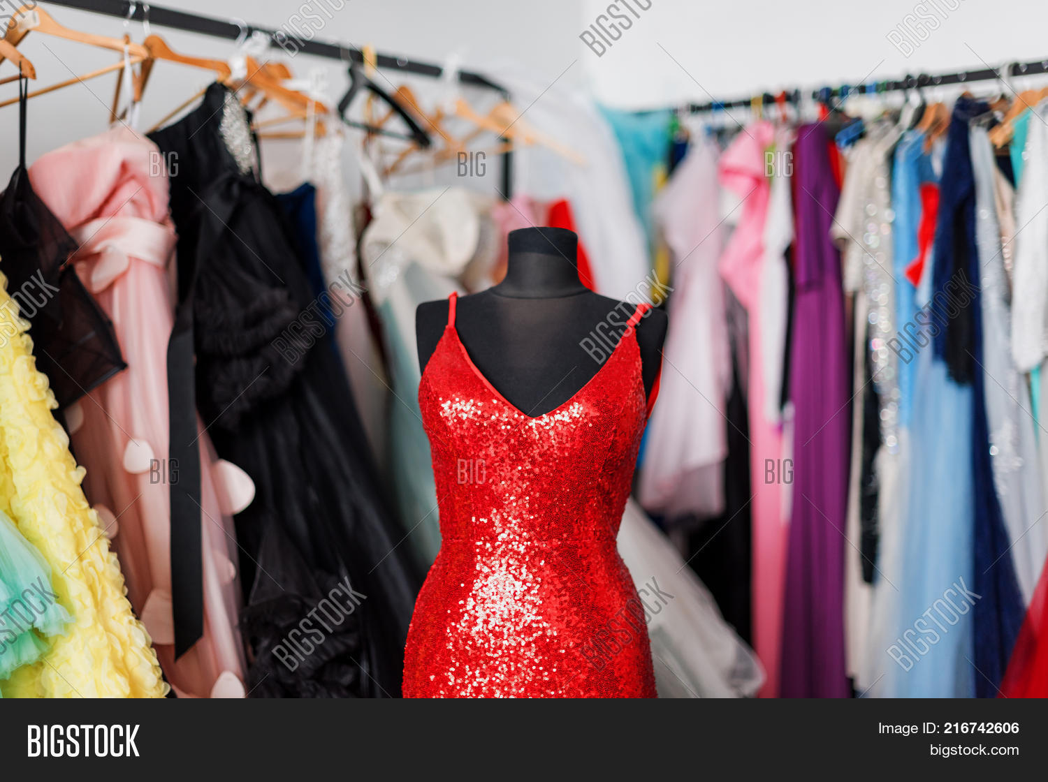 Many Ladies Evening Gown Long Image & Photo | Bigstock